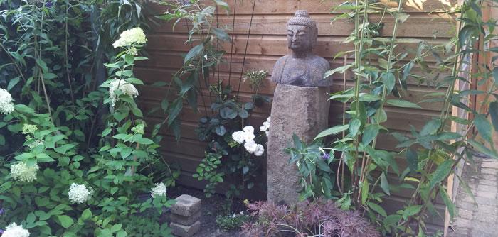 Boedha in de  tuin